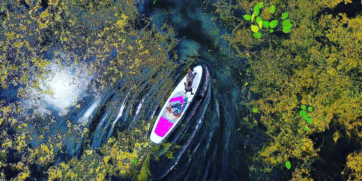 Inflatable stand up paddleboarder paddling through river navigation