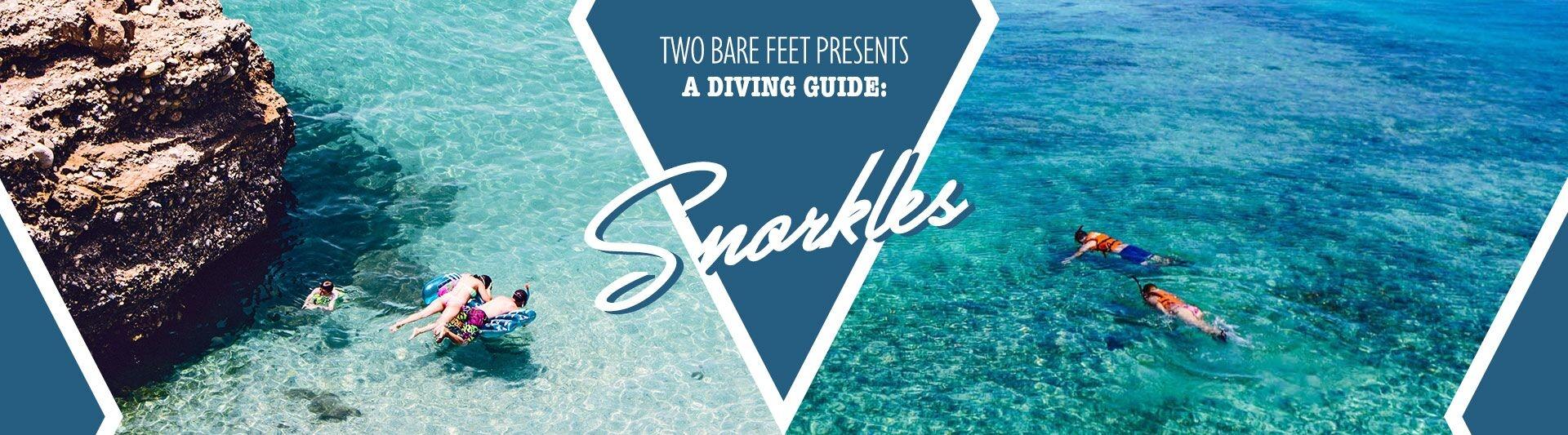 snorkel banner